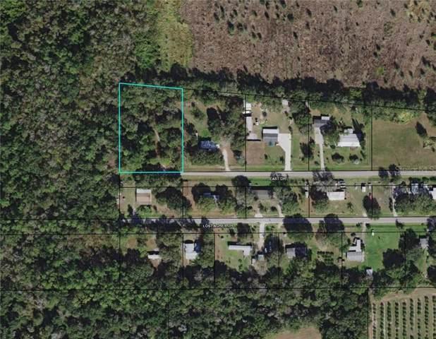 1434 East Drive, Wauchula, FL 33873 (MLS #L4911028) :: Cartwright Realty