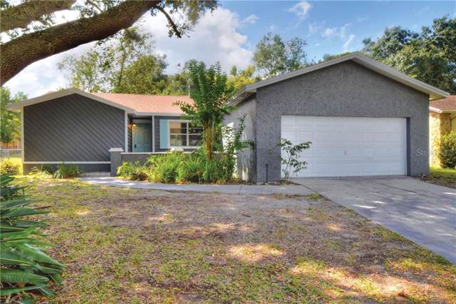 3805 Feather Drive, Lakeland, FL 33812 (MLS #L4911175) :: The Duncan Duo Team