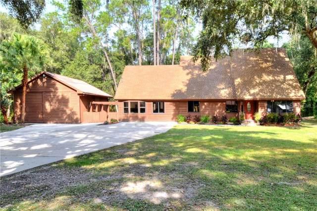1743 Itchepackesassa Drive, Lakeland, FL 33810 (MLS #L4912062) :: Armel Real Estate
