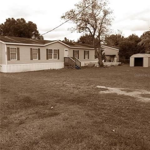 2683 SW Lois Avenue, Arcadia, FL 34266 (MLS #L4912130) :: Premium Properties Real Estate Services