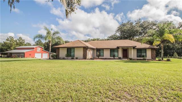 4225 Walyn Drive, Mulberry, FL 33860 (MLS #L4912151) :: Rabell Realty Group