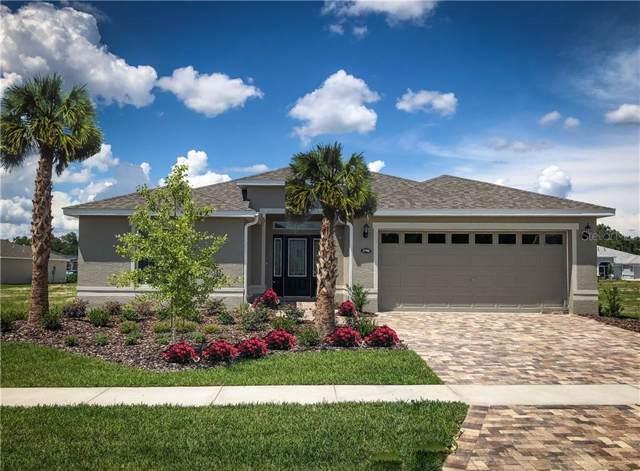 3686 Arlington Ridge Boulevard, Leesburg, FL 34748 (MLS #L4912260) :: Cartwright Realty