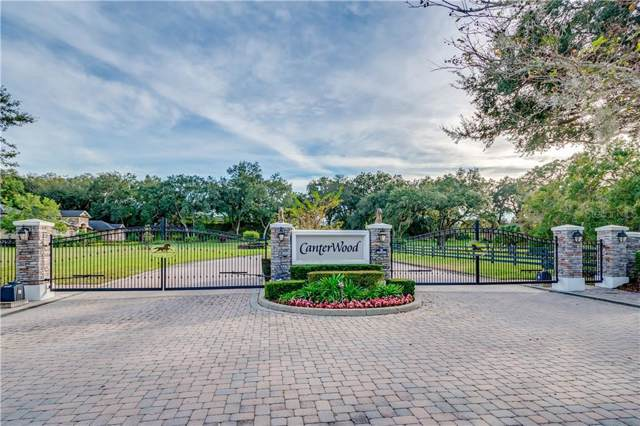 285 Canterwood Lane, Mulberry, FL 33860 (MLS #L4912460) :: The Duncan Duo Team