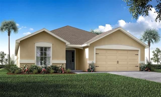 409 Hoover Lane, Auburndale, FL 33823 (MLS #L4912656) :: Florida Real Estate Sellers at Keller Williams Realty
