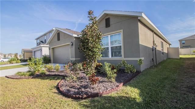 12026 Ledbury Commons Drive, Gibsonton, FL 33534 (MLS #L4913183) :: Team Pepka