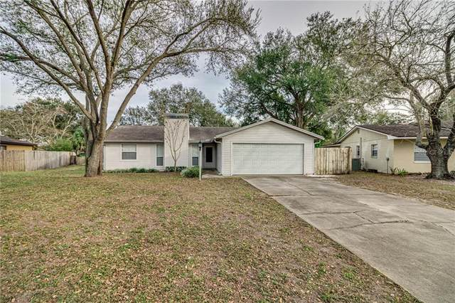 6520 Calusa Drive, Lakeland, FL 33813 (MLS #L4913511) :: The Duncan Duo Team