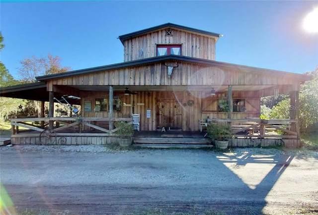 4260 Olinger Farm Road, Lakeland, FL 33810 (MLS #L4913978) :: 54 Realty
