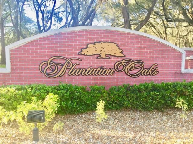 6911 Orianna Oaks Drive, Plant City, FL 33567 (MLS #L4914106) :: Griffin Group