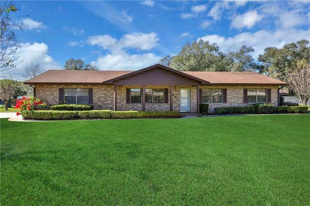 8922 Lori Lane, Lakeland, FL 33809 (MLS #L4914171) :: Team Pepka