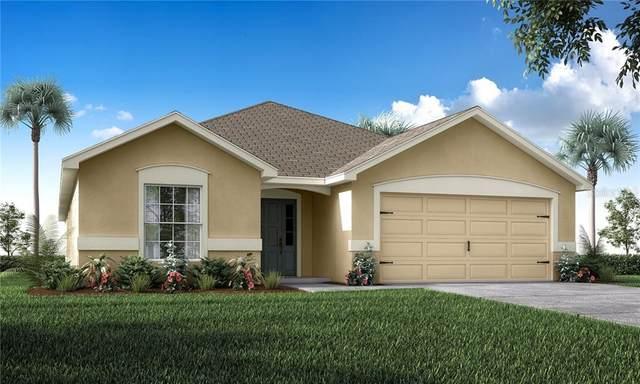 6995 Gideon Circle, Zephyrhills, FL 33541 (MLS #L4914805) :: GO Realty