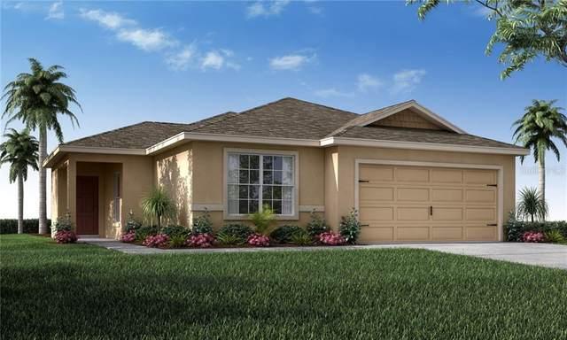 513 Pentas Lane, Haines City, FL 33844 (MLS #L4914919) :: Team Bohannon Keller Williams, Tampa Properties