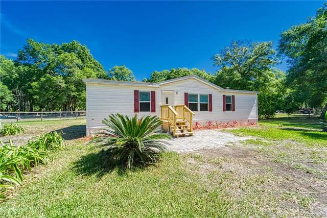 40917 River Road, Dade City, FL 33525 (MLS #L4914950) :: Team Borham at Keller Williams Realty