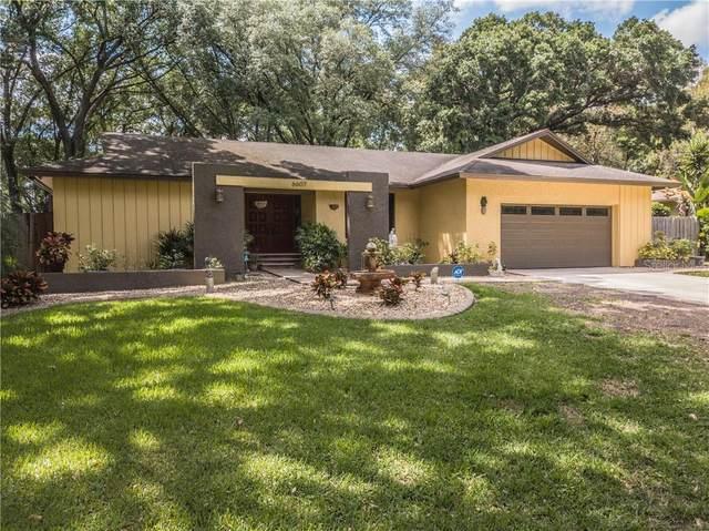6607 Glencoe Drive, Temple Terrace, FL 33617 (MLS #L4914954) :: Griffin Group