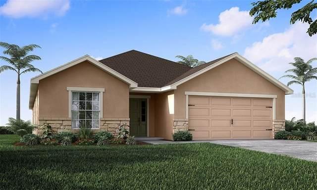 227 Serena Ridge Drive, Seffner, FL 33584 (MLS #L4915812) :: Team Borham at Keller Williams Realty