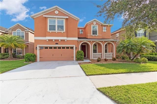19338 Water Maple Drive, Tampa, FL 33647 (MLS #L4915953) :: Team Bohannon Keller Williams, Tampa Properties