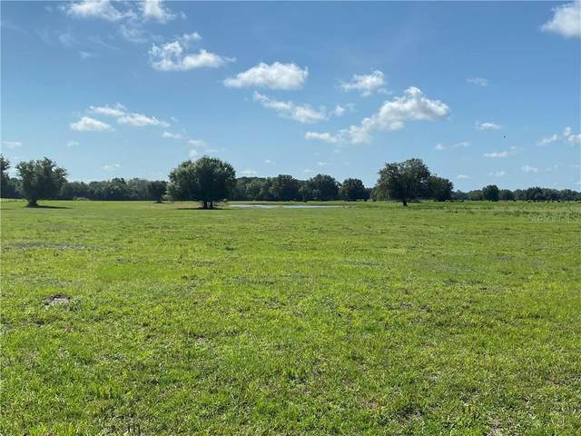 SW Co Road 769, Arcadia, FL 34266 (MLS #L4916186) :: Rabell Realty Group