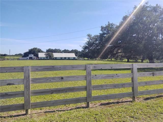 925 E Oak Island Road, Avon Park, FL 33825 (MLS #L4916500) :: Team Bohannon Keller Williams, Tampa Properties