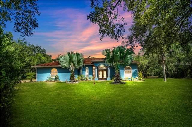 14915 Hays Road, Spring Hill, FL 34610 (MLS #L4916684) :: Cartwright Realty