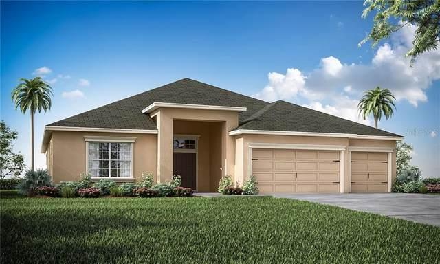 3051 Pearly Drive, Lakeland, FL 33812 (MLS #L4916722) :: Cartwright Realty