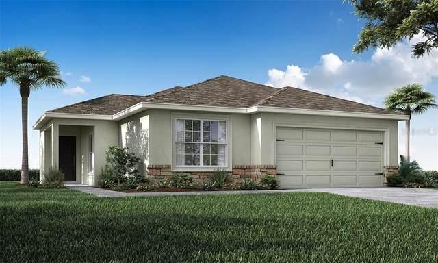 11677 Stone Pine Street, Riverview, FL 33579 (MLS #L4916732) :: Zarghami Group