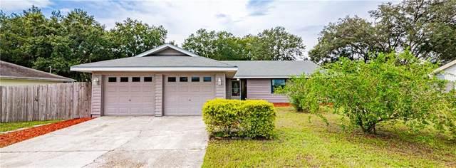 6521 Lakeland Highlands Road, Lakeland, FL 33813 (MLS #L4916822) :: Team Bohannon Keller Williams, Tampa Properties