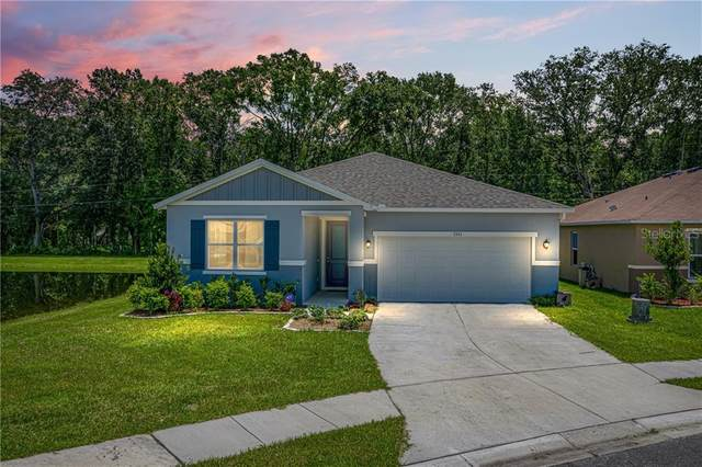7351 Ibis Drive, Lakeland, FL 33810 (MLS #L4916939) :: Cartwright Realty