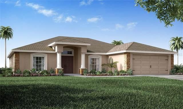196 Cloverbrook Trail, Davenport, FL 33837 (MLS #L4917448) :: Burwell Real Estate