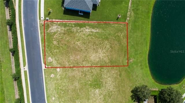 772 Water Fern Trail Drive, Auburndale, FL 33823 (MLS #L4917646) :: Lockhart & Walseth Team, Realtors