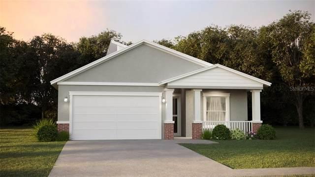 227 Burbank Avenue, Lakeland, FL 33801 (MLS #L4917935) :: Cartwright Realty
