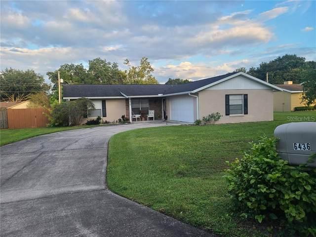 6436 Calusa Drive, Lakeland, FL 33813 (MLS #L4918121) :: Team Bohannon Keller Williams, Tampa Properties