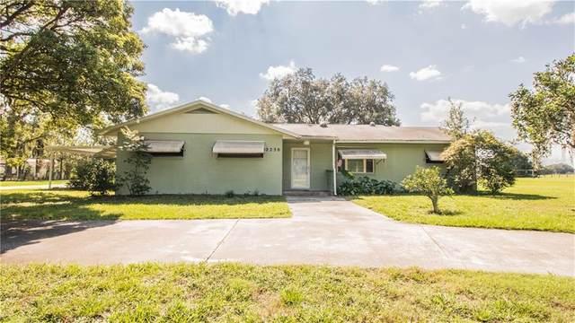 2230 D R Bryant Road, Lakeland, FL 33810 (MLS #L4918283) :: Griffin Group