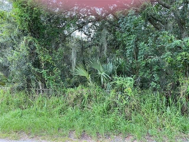 910 Tarpon Road, Auburndale, FL 33823 (MLS #L4918340) :: Gate Arty & the Group - Keller Williams Realty Smart