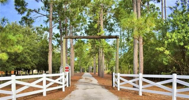 2000 Buckeye Loop Road, Winter Haven, FL 33881 (MLS #L4918661) :: Pepine Realty
