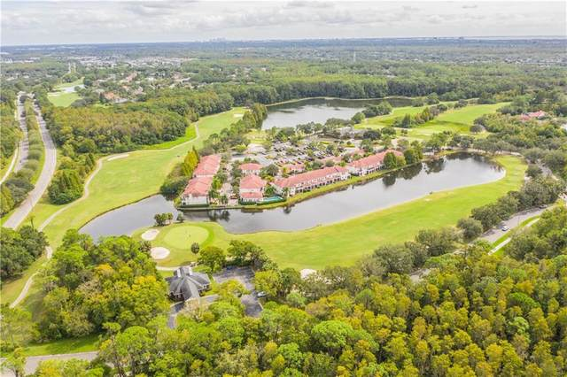 12335 Berkeley Square Drive #12335, Tampa, FL 33626 (MLS #L4918899) :: Griffin Group
