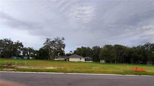 0 Gandhi Drive, Lakeland, FL 33813 (MLS #L4918908) :: The Robertson Real Estate Group