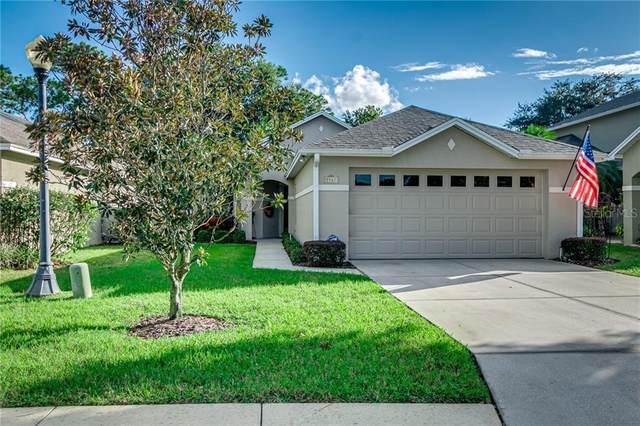 2067 Rocky Pointe Drive, Lakeland, FL 33813 (MLS #L4918921) :: Frankenstein Home Team