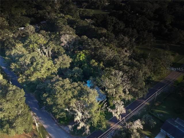 18909 Dorman Road, Lithia, FL 33547 (MLS #L4918983) :: GO Realty