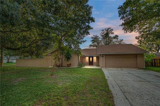 2241 Flaming Arrow Drive, Lakeland, FL 33813 (MLS #L4918992) :: Pristine Properties