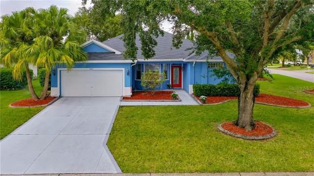 3332 Michener Place, Plant City, FL 33566 (MLS #L4919243) :: Griffin Group