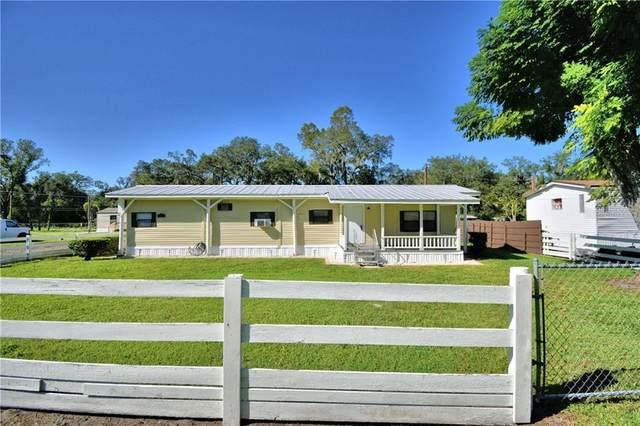 1413 Faye Avenue, Lakeland, FL 33803 (MLS #L4919360) :: Bridge Realty Group