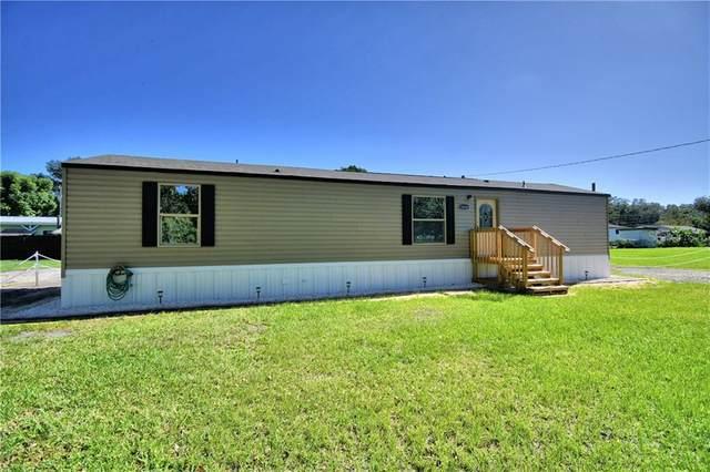 1414 Eva Avenue, Lakeland, FL 33803 (MLS #L4919373) :: Delgado Home Team at Keller Williams