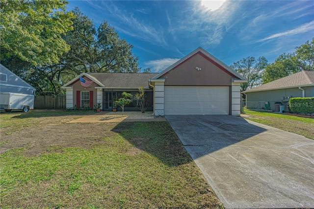 905 Sunridge Point Drive, Seffner, FL 33584 (MLS #L4920318) :: Prestige Home Realty