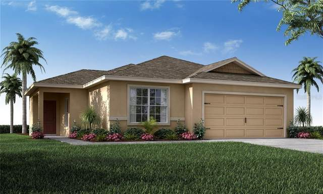 6493 Polly Lane, Lakeland, FL 33813 (MLS #L4920379) :: The Duncan Duo Team