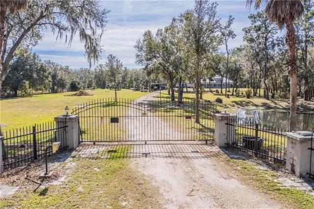5421 Kelly Road, Plant City, FL 33565 (MLS #L4920431) :: Dalton Wade Real Estate Group