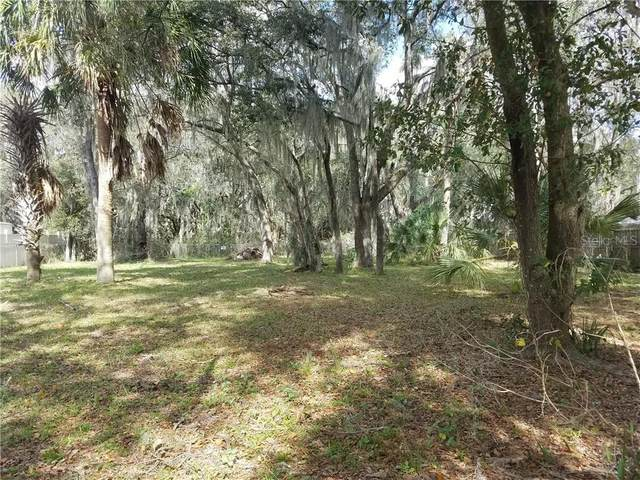 4818 Myrtle View Drive N, Mulberry, FL 33860 (MLS #L4920509) :: Visionary Properties Inc