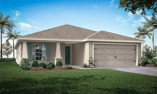 11958 Stone Pine Street, Riverview, FL 33569 (MLS #L4920833) :: Realty One Group Skyline / The Rose Team