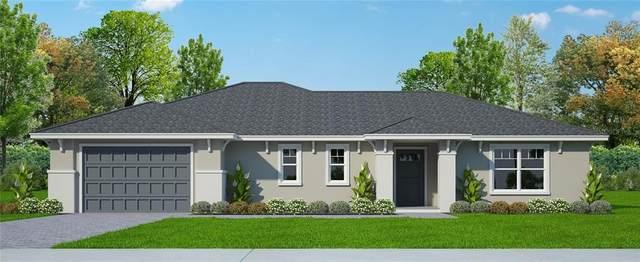2115 Sutton Ridge Avenue, Lakeland, FL 33810 (MLS #L4920845) :: Pepine Realty