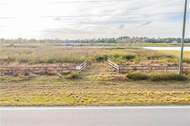 10299 Hwy 555, Fort Meade, FL 33841 (MLS #L4920964) :: CGY Realty