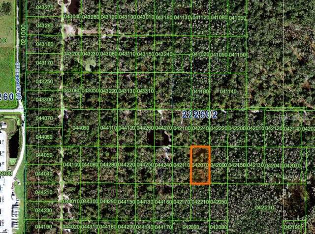 0 (INACCESSIBLE TRACT), Kathleen, FL 33849 (MLS #L4921119) :: The Price Group