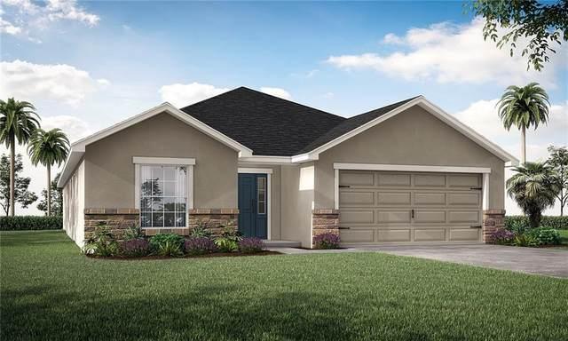 6392 Gardner Drive, Lakeland, FL 33813 (MLS #L4921197) :: Sarasota Property Group at NextHome Excellence